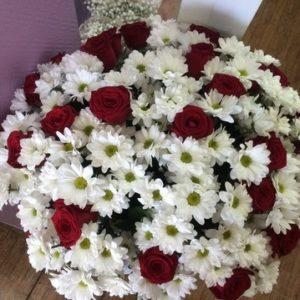 Букет №11 Для самых любимых (20 бордовых роз, 25 ромашковидных хризантем)