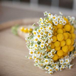 Букет №10 Невеста-2 (25 полевых ромашек, краспедия)
